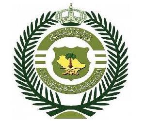 Казнены трое иранцев, пытавшихся осуществить контрабанду гашиша в Королевство
