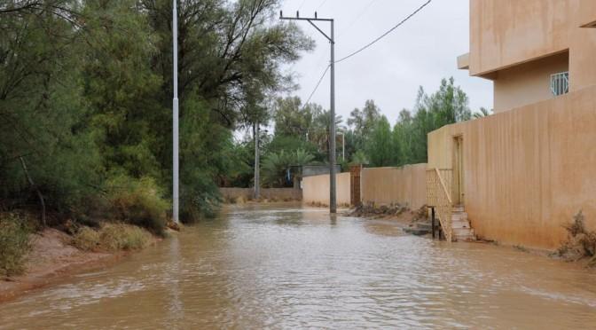 Дожди наполнили лощины в местности «Кара аль-Махмул»