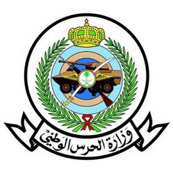 Битва при ар-Рабуа*: фотографии трупов разоблачили  фабрикации хусиитов и ложь их наёмников