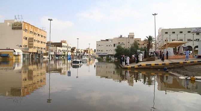 Бурайда после дождей