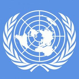 ООН приняла резолюцию, осуждающую нарушение прав человека в Сирии