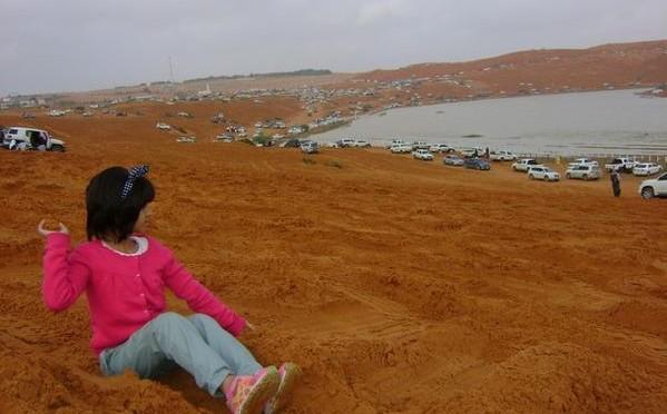 Пустыня в окрестностях Эр-Рияда  оживляется после дождей