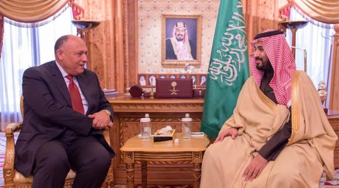 Его Высочество заместитель наследного принца встретился с  министром иностранных дел Египта