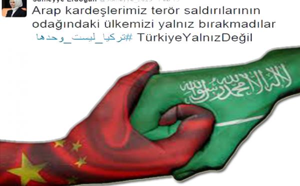 Дочь Р.Т.Эрдогана: Арабы никогда не оставят Турцию одну