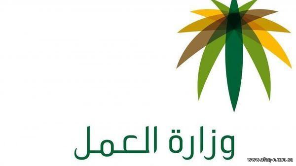 Министерство труда провинции Джуф провело инспеционные рейды по объектам коммуникационной отрасли провинции