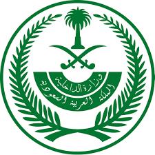 МВД: приведён в исполнение смертный приговор в отношении преступника, убившего в Эр-Рияде свою жену