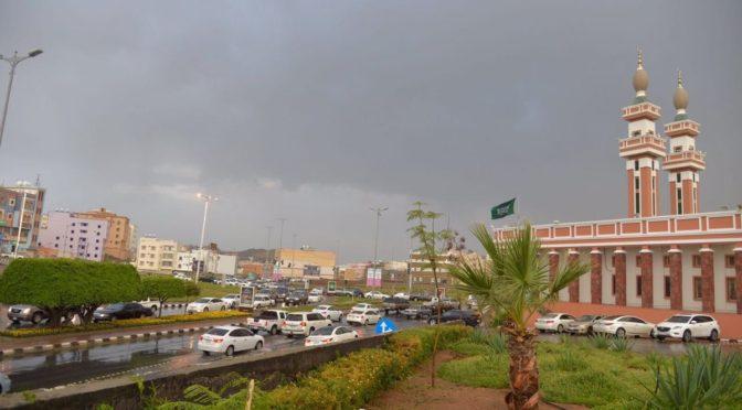 Провинция Асир встречает гостей дождём