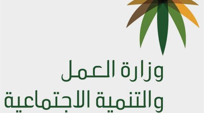 Министерство труда предостерегает от сотрудничества с компаниями, предоставляющими домашнюю прислугу