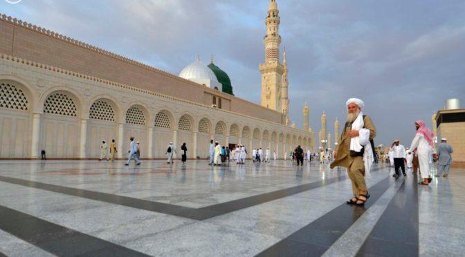 31 050 паломников прибыли в Пресветлую Медину