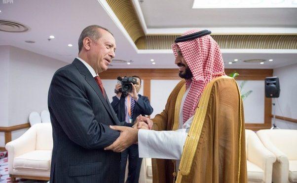 Заместитель наследного принца встретился с президентом Турецкой республики