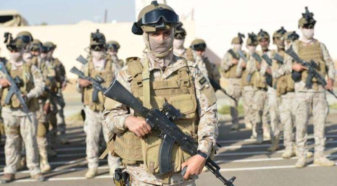 Освобождён прибрежный район Зубаба, армия Йемена приближается к порту Моха