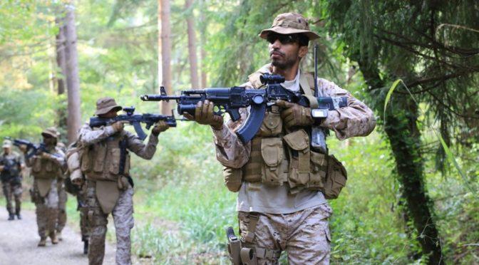 Сухопутные силы Королевства проводят совместные учения с Вооружёнными силами Франции