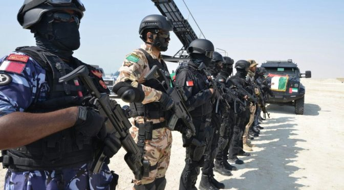 Мероприятия учений сил безопасности Арабского (Персидского) залива продолжаются в Бахрейне