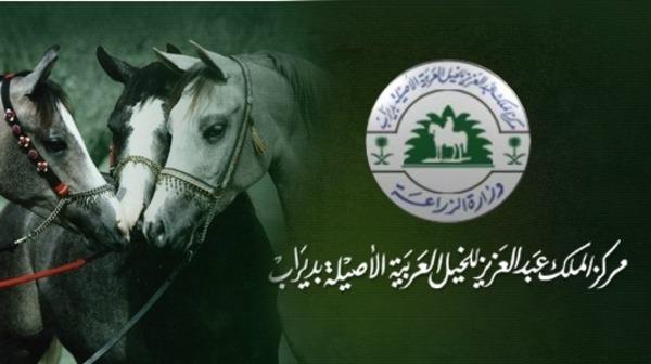 По поручению Его Высочества губернатора провинции Эр-Рияд глава администрации провинции поздравил победителей конкурса чистокровных арабских лошадей