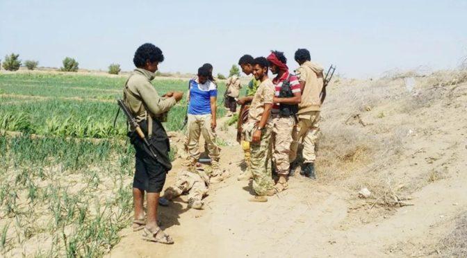 Армия Йемена взяла под контроль главную дорогу между городами Моха и аль-Хуха