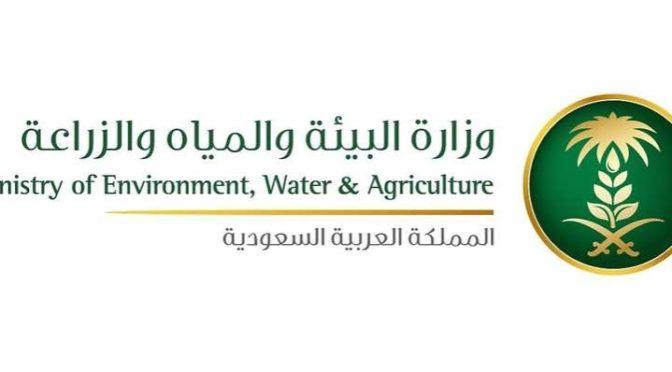 Министерство водных ресурсов и сельского хозяства отрицает отмену субсидий на муку и хлеб