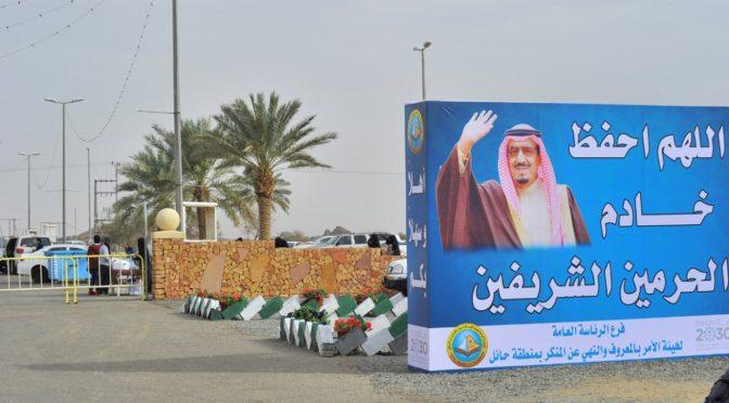 Международный фестиваль пустыни