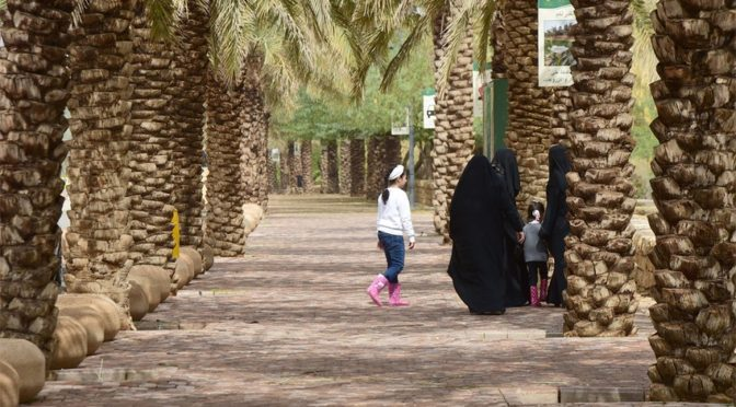 Утро Эр-Рияда: после дождя