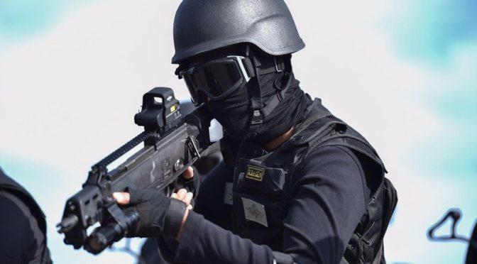 «Отечество 87»: так силы спецназа противостоят террористическим операциям