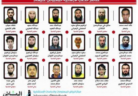 МВД: пресечена деятельность 4 связанных между собой террористических ячеек