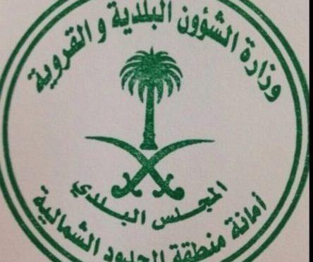 Муниципалитет Аръара планирует присвоить одной из улиц имя павшего мученником рядового аль-Анзи