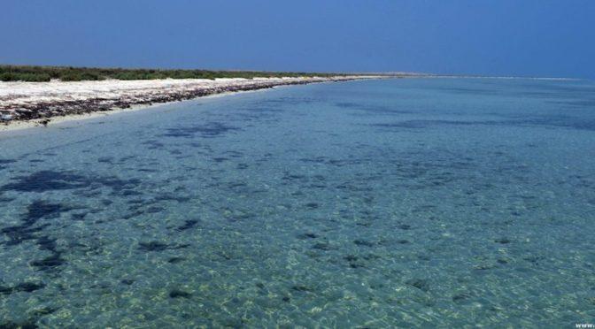 Остров Барак: красота творения Господа, покоряющая разум