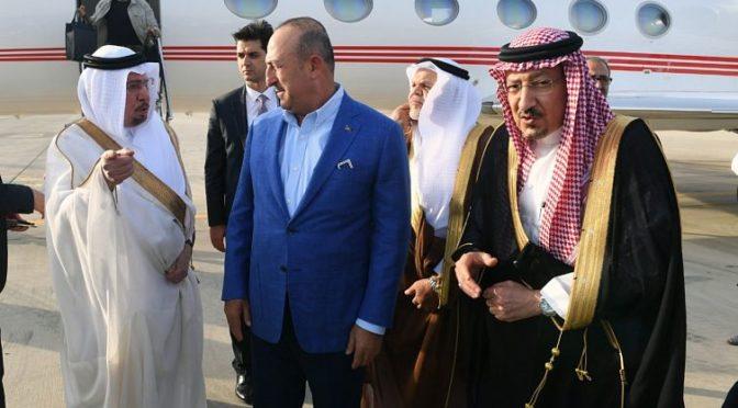 Министр иностранных дел Турции прибыл в Джидду