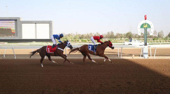 Конно-спортивный клуб открыл первую неделю конных скачек летнего сезона в Таифе