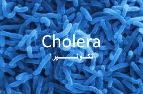 Заместитель министра здравоохранения Йемена: «Наиболее высокий уровень заболеваемости холерой в районах, контролируемых мятежниками»