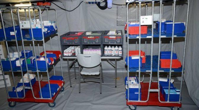 Медицинские службы Вооружённых сил приведены в полную готовность как в стационарных  госпиталях, так и в полевых  подразделениях, развёрнутых в местах паломничества