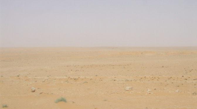 Двое юношей спасли подданного и его сына в пустыне Аръаръ