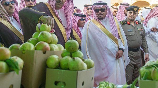 Принц Хисам бин Сауд открывает 6-ой фестиваль гранатов