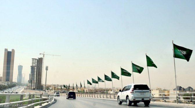 Кладбище «ас-Саниа» в округе ал-Лайс страдает от вторжения диких зверей и  ящериц