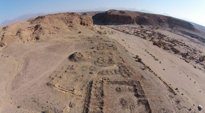 Саудийско-международная археологическая группа проводит раскопки артефактов каменного века в трёх регионах провинции Табук