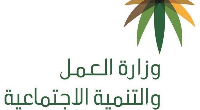 Саудизация точек проката автомобилей начнётся со следующего месяца Раджаб