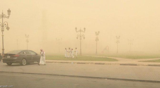 Правительственные органы провинции Джуф успешно справляются с пыльной бурей, накрывшей провинцию