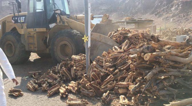 Министерство окружающей среды: По результатм 60 инспекционных визитов за 2 недели в Лучезарной Медине конфисковано 140 тонн дров