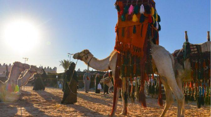 39-ый весенний фестиваль в Бурайде продолжат свои мероприятия