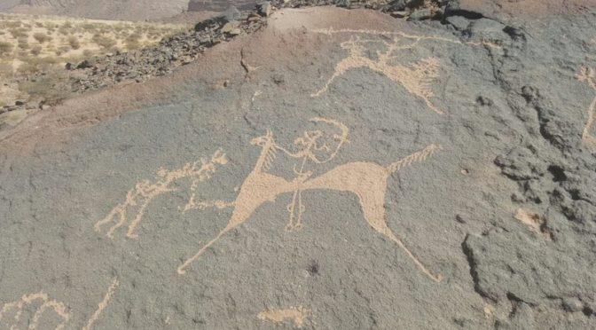 45 каменных сооружений обнаружено в провинции Асир