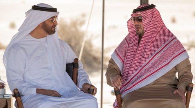 Наследный принц Абу Даби принял министра внутренних дел Королевства