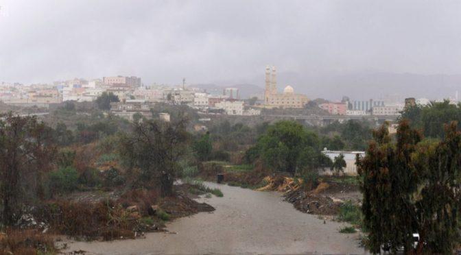 Обильные дожди прошли над провинцией Асир, департамент гражданской обороны призывает подданных остерегатся селевых потоков
