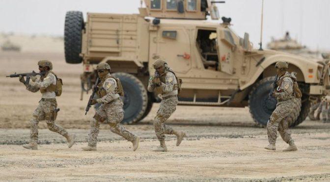 Армия Йемена захватила новые позиции в провинции Саада