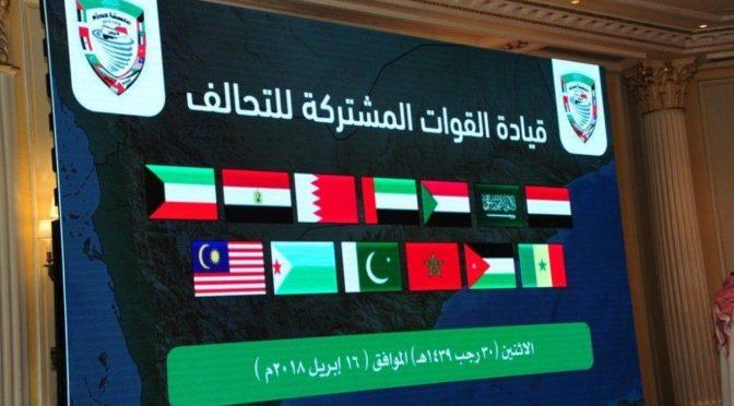 Коалиция в поддержку законной власти в Йемене рассказывает о БПЛА, кторый был сбит в аэропорту Абхи
