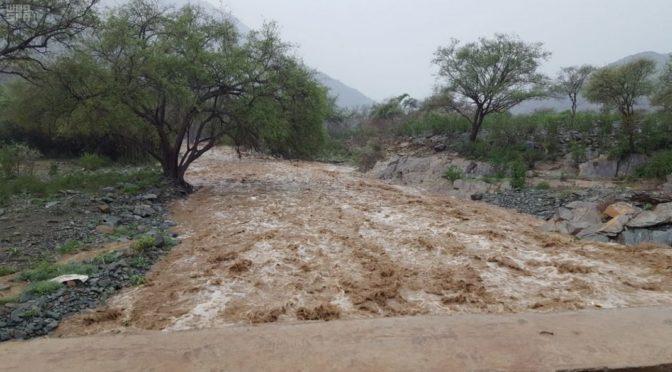 Дожди в округе Мухайял