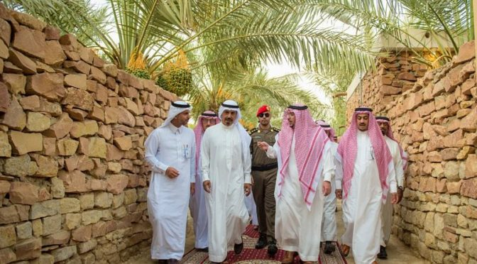Губернатор провинции Касым посетил сельскохозяйственную ферму в Бурайде, отметив важность сельского туризма