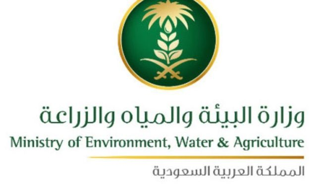 Начинается второй этап озеленения Королевства и высадки  2.3 млн деревьев