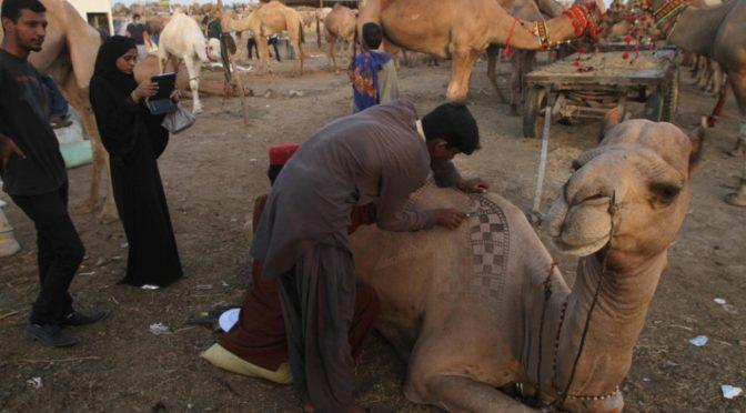 Карачи готовится к Ид аль-Адха