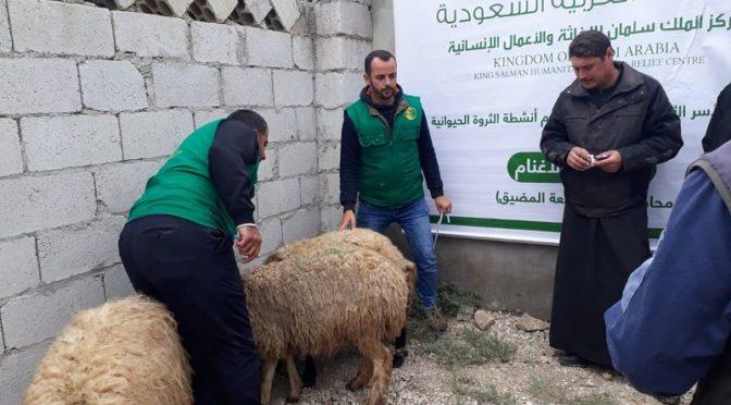 Центр им.Короля Салмана продолжает поддержку наиболее нуждающихся сирийских семей