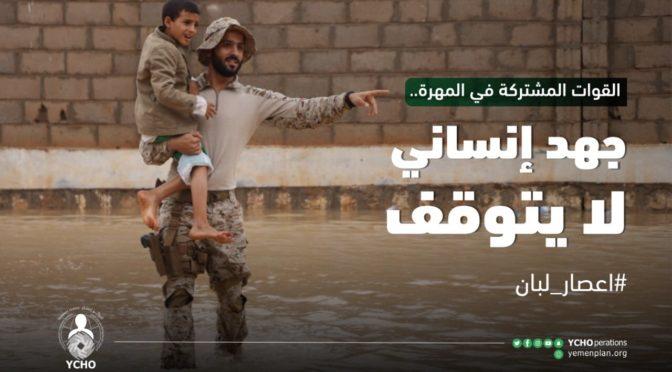 Хусииты удерживают 16 судов в портах Ходейда и Салиф