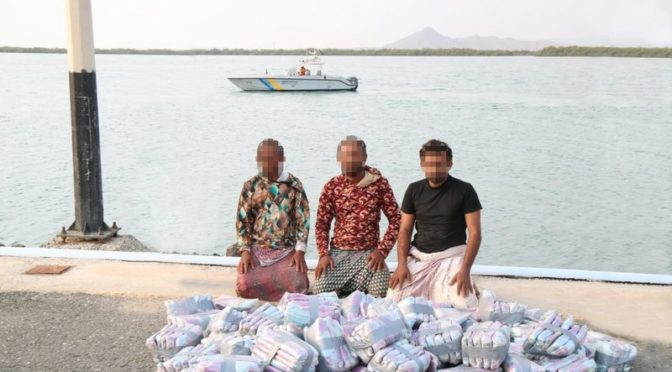 Пограничные войска Джазана, Наджрана и Асира предотвратили контрабандный ввоз 876 кг гашиша в месяце рабиа-ахира